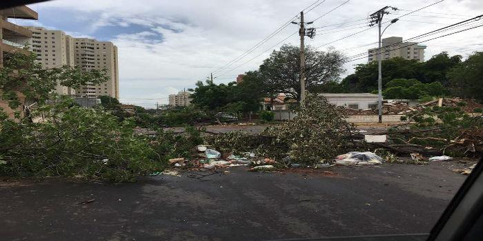 Maracaibo 4